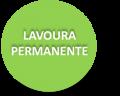 LAVOURA PERMANENTE